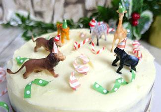 How to Make A Party Animal Gingerbread Cake!