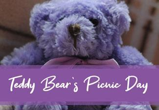 Celebrate Teddy Bear's Picnic Day!