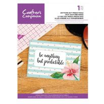 Clear Acrylic Quirky Sentiment Stamps - Anything but Predictable