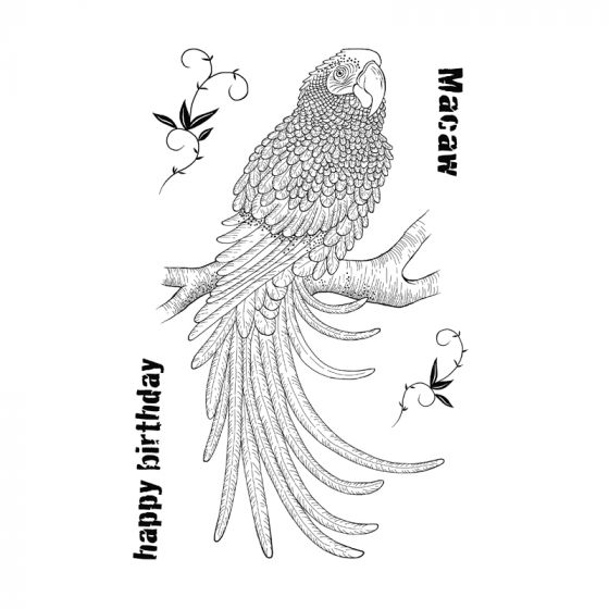 Woodware Clear Stamp - Magnificent Macaw