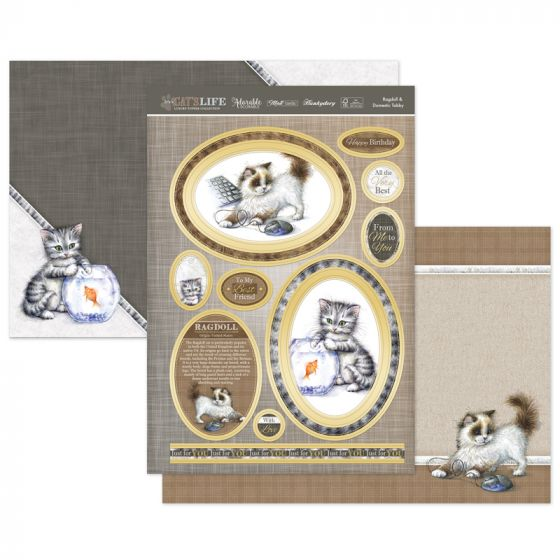 Ragdoll & Domestic Tabby Luxury Topper Set