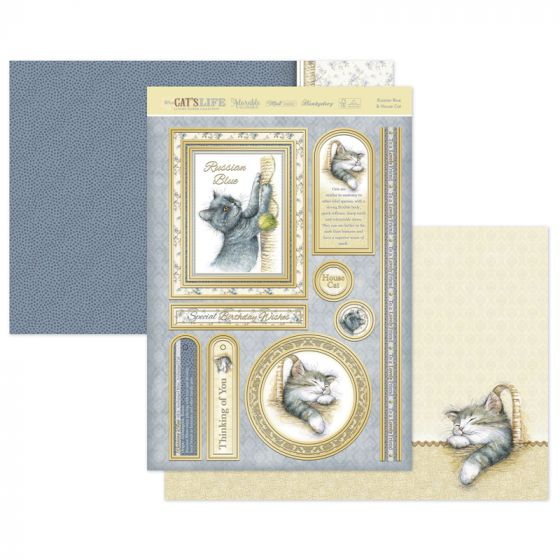 Russian Blue & House Cat Luxury Topper Set