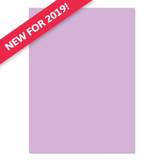 Adorable Scorable A4 Cardstock x 10 sheets - Wild Heather