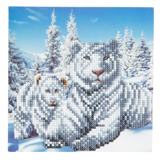 Crystal Card Kit - Snow White Tigers