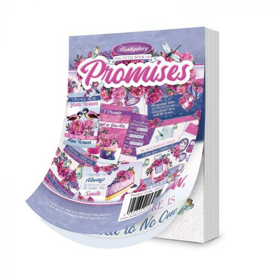 The Little Book of Promise