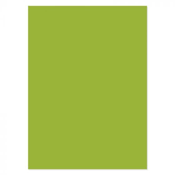 Adorable Scorable A4 Cardstock x 10 sheets - Pistachio Promise