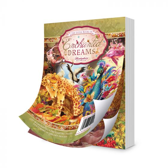 The Little Book of Enchanted Dreams