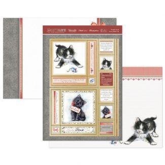 Tuxedo Cat & Lucky Black Cat Luxury Topper Set
