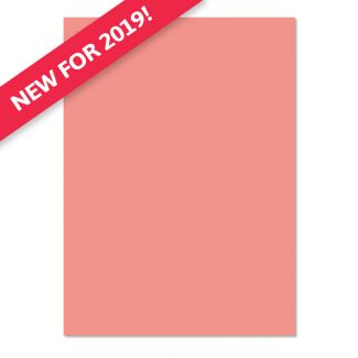 Adorable Scorable A4 Cardstock x 10 sheets - Coral Crush