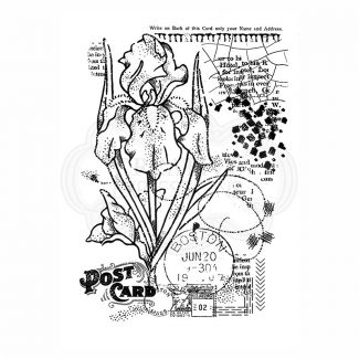 Woodware Clear Stamp - Vintage Iris