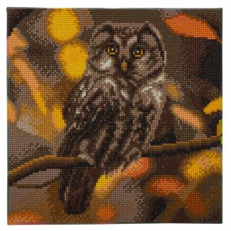 Framed Crystal Art Kit 30cm x 30cm - Tawny Owl