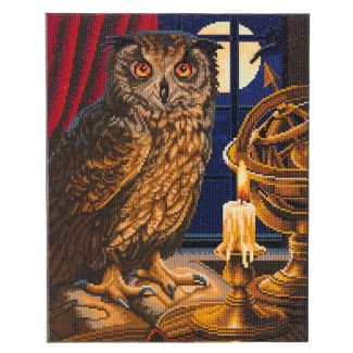 Framed Crystal Art Kit 40cm x 50cm - The Astrologer Owl