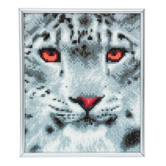 Picture Frame Kit 21cm x 25cm - Snow Leopard