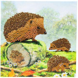 Crystal Card Kit - Happy Hedgehogs
