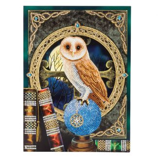 Giant Crystal Art Card Kit - Spell Keeper Owl