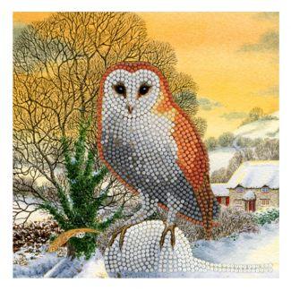Crystal Card Kit - Winter Owl