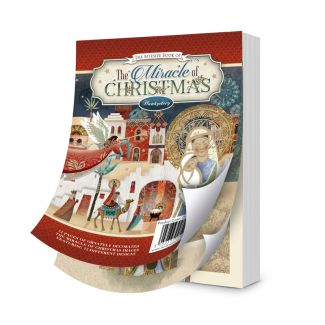 The Bitesize Book of Miracle of Christmas
