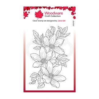 """Woodware Clear Stamp - Garden Spray (6"""" x 4"""")"""