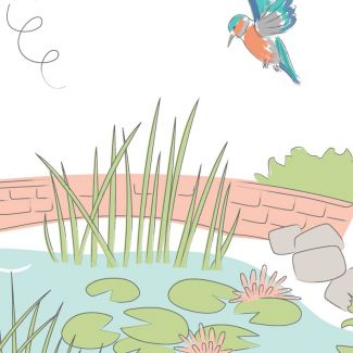 Lily Pad by Debbie Shore - In the Garden