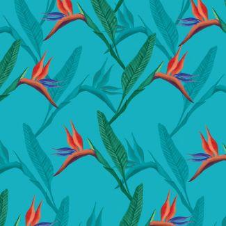 Sarah Payne - Birds of Paradise - Birds of Paradise Flower
