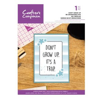 Clear Acrylic Quirky Sentiment Stamps - Don
