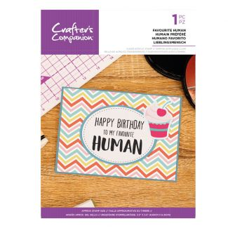 Clear Acrylic Quirky Sentiment Stamps - Favourite Human