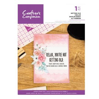 Clear Acrylic Quirky Sentiment Stamps - Getting Old