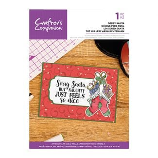 Clear Acrylic Christmas Quirky Sentiment Stamps - Sorry Santa