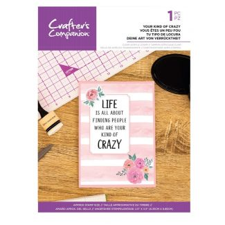 Clear Acrylic Quirky Sentiment Stamps - Your Kind of Crazy