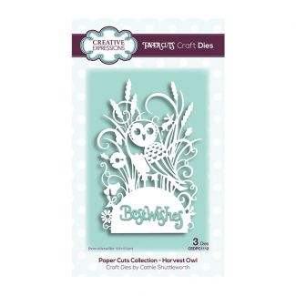 Creative Expressions Paper Cuts Harvest Owl Craft Die