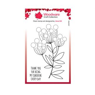 """Woodware Clear Stamp -  Bubble Bloom Trinny (6"""" x 4"""")"""
