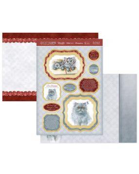 Blue Persian & Persian Kittens Luxury Topper Set