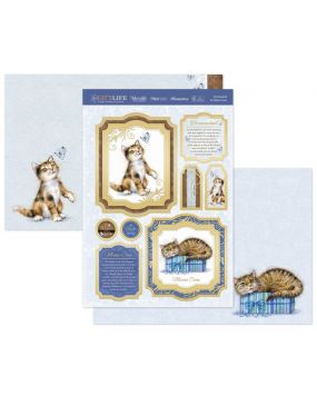 Tortoiseshell & Maine Coon Luxury Topper Set