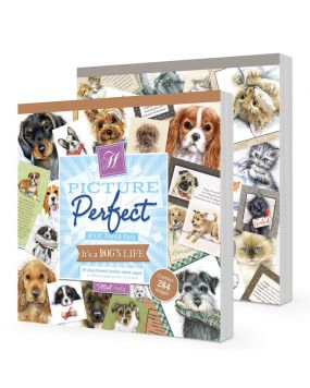 Picture Perfect - It's a Dogs & Cat's Life Multibuy